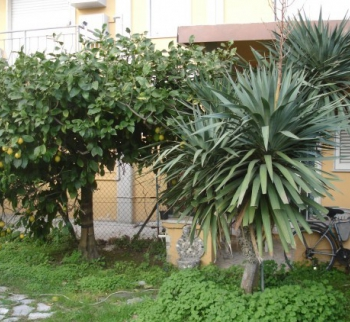 Apartment in Sarzana mit Garten